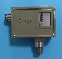 D511/7D防爆压力控制器